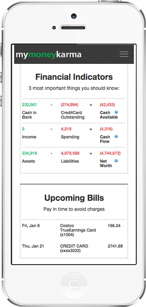 Free Oneview of finances screen shot